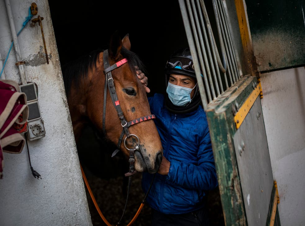 Spain Horse Racing Photo Gallery