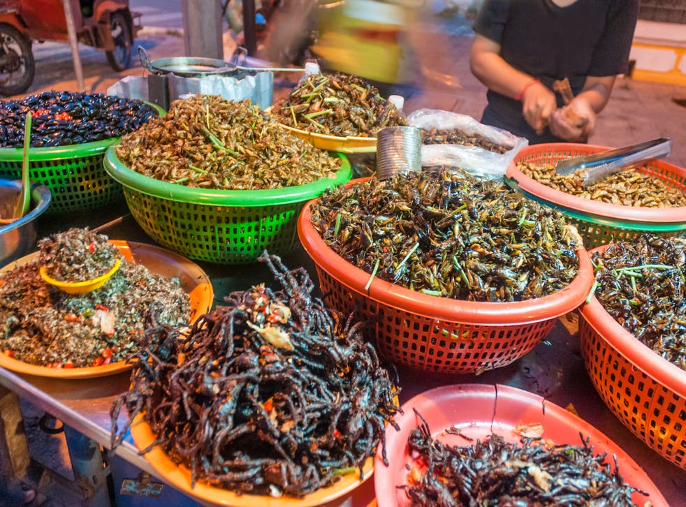 <p>Bugbear: edible insects for sale in Phnom Penh, Cambodia</p>