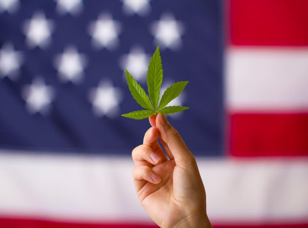 <p>Legalización del cannabis en los estados unidos de américa. Hoja de cannabis en manos sobre fondo de bandera de Estados Unidos.</p>