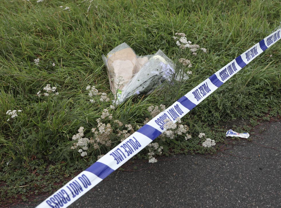 <p>Attack took place on Bugs Bottom fields in Emmer Green</p>