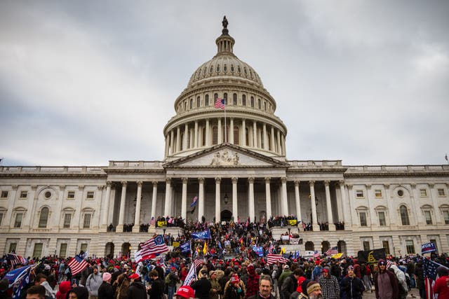 <p>A mob of Trump supporters invades the Capitol Building on 6 January</p>