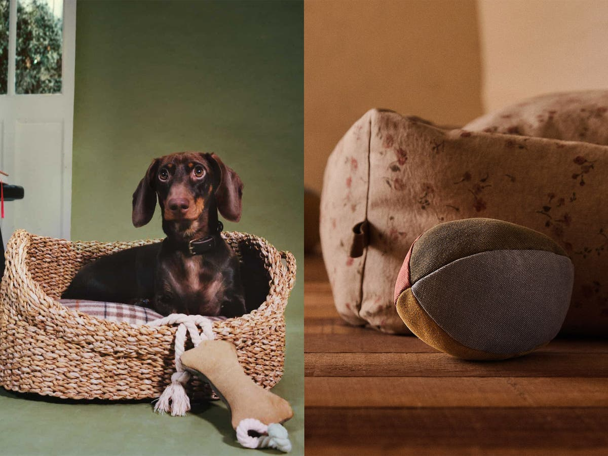 Zara Home Launches Pet Collection Here S Everything We Want To Buy The Independent