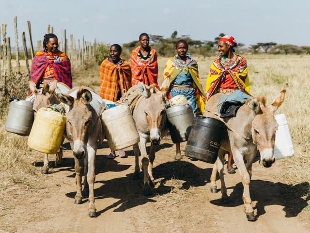Women in Kenya walking with donkeys to fetch water