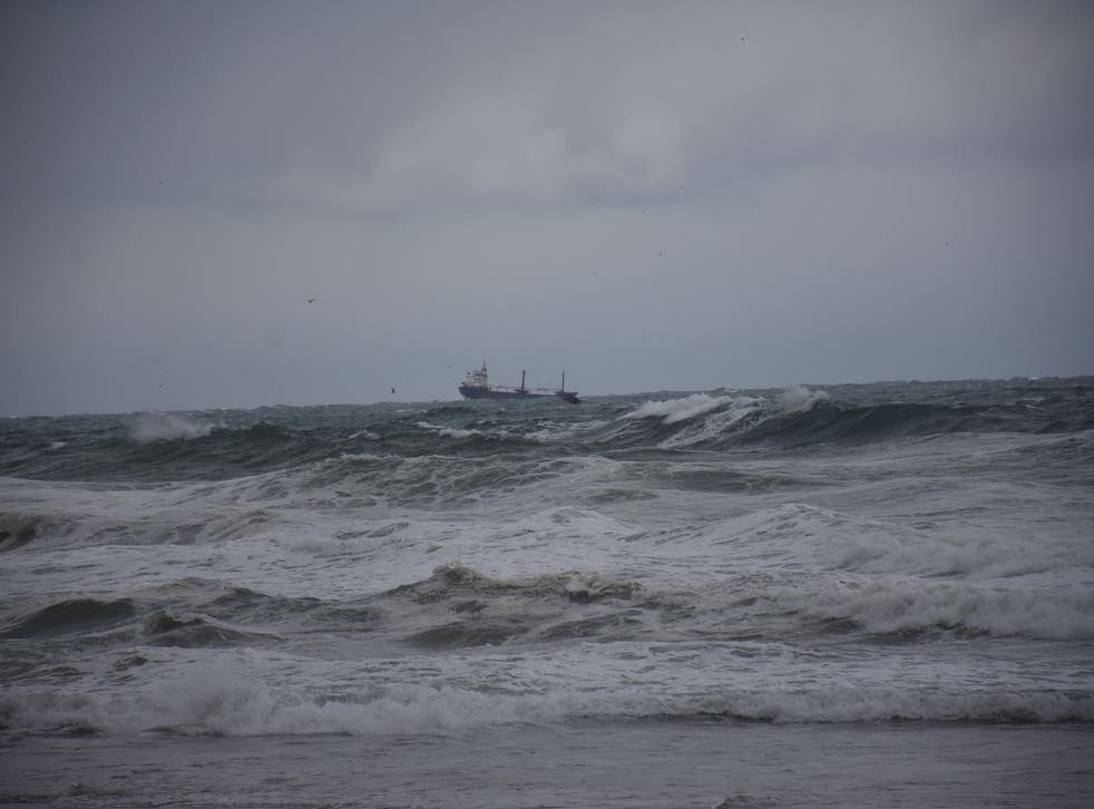 <p>Pictured: the area of the black sea where the cargo ship sunk</p>