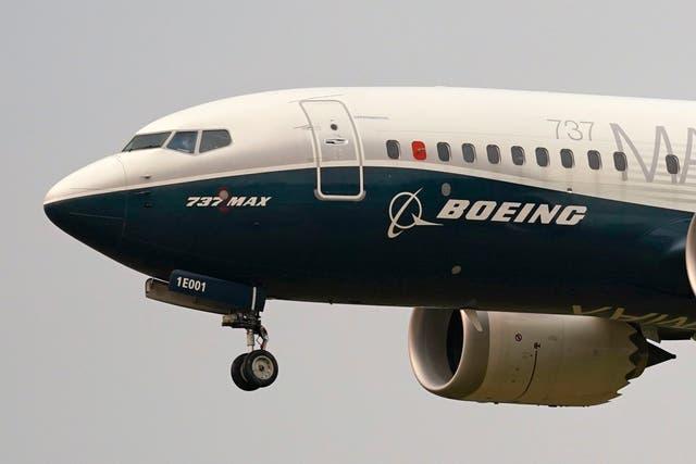 <p>Los vuelos del 737 Max fueron suspendidos después de la caída de un avión de Lion Air cerca de Yakarta el 29 de octubre de 2018&nbsp;</p>