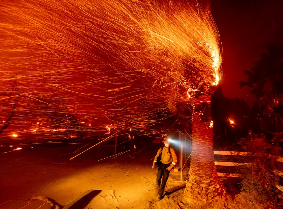 A firefighter passes a burning tree while battling the Bond Fire in Orange County, California last month. More fires have erupted and red flag warnings are in place during what is typically the state's rainy season