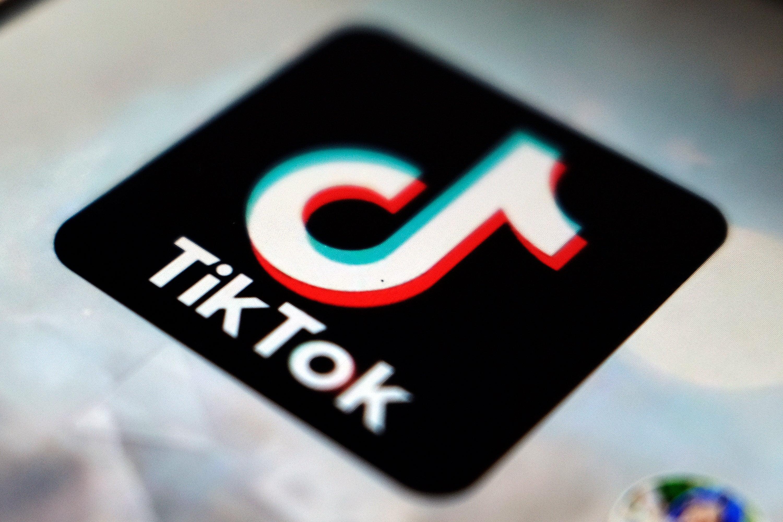 TikTok hamsters and Lana Del Ray - how TikTok cults work