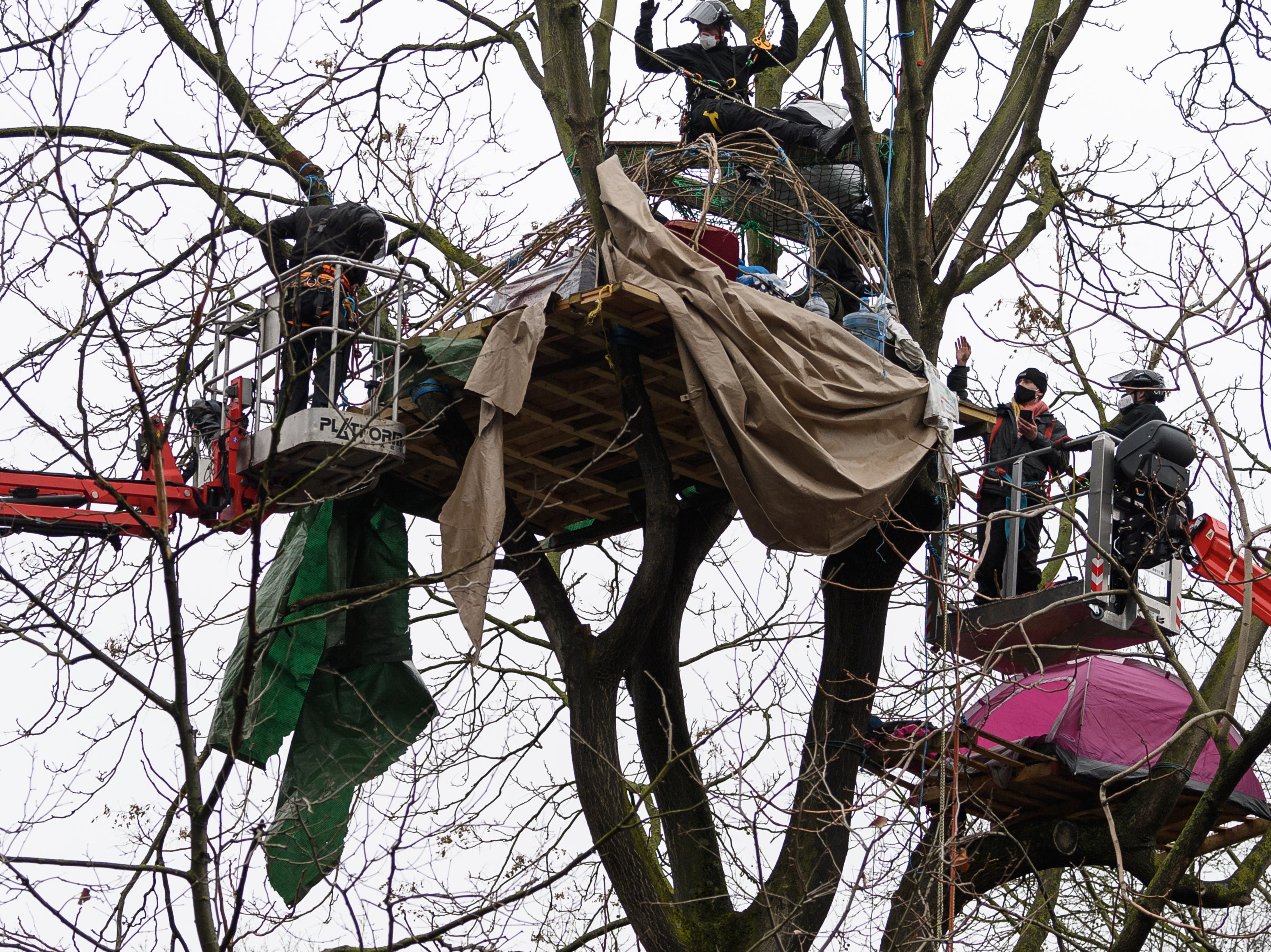 HS2 protests: Bailiffs remove activists from central London trees and hand them over to police
