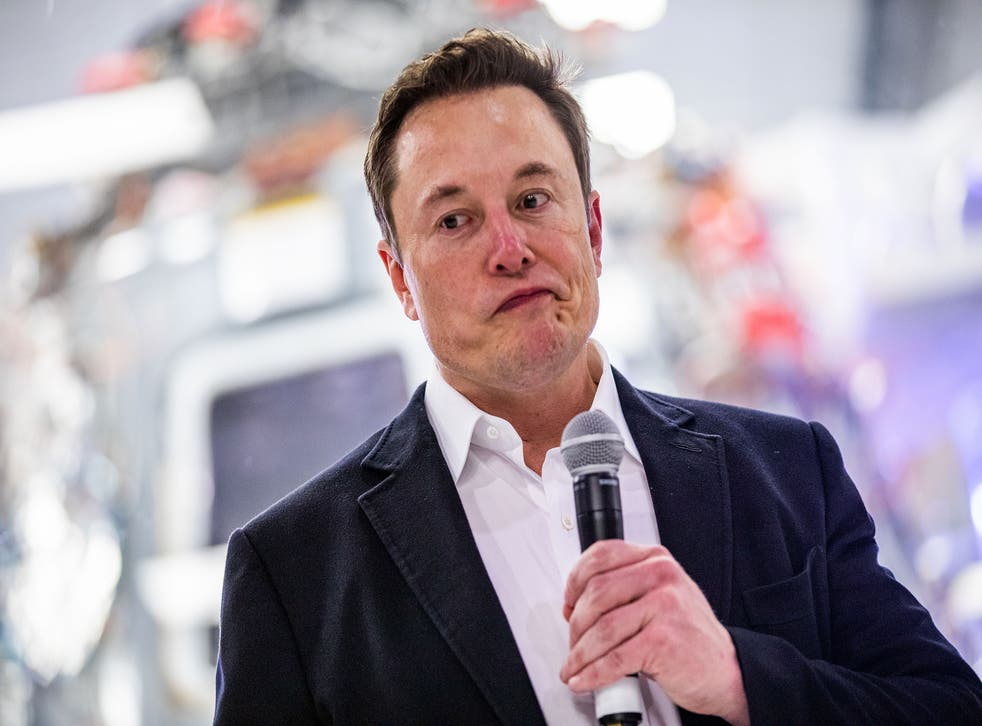 'We can't have this Loch Ness Monster bull****': Elon Musk ...