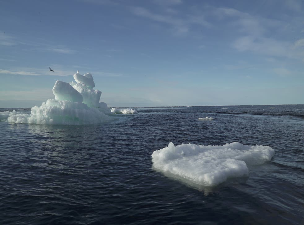 Floating ice in the Arctic Ocean in September 2020