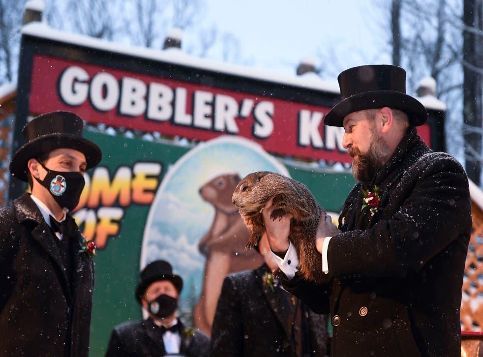 Punxsutawney Phil's town misses Groundhog Day boost ...