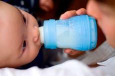 Los alimentos populares para bebés contienen metales pesados tóxicos, según el congreso