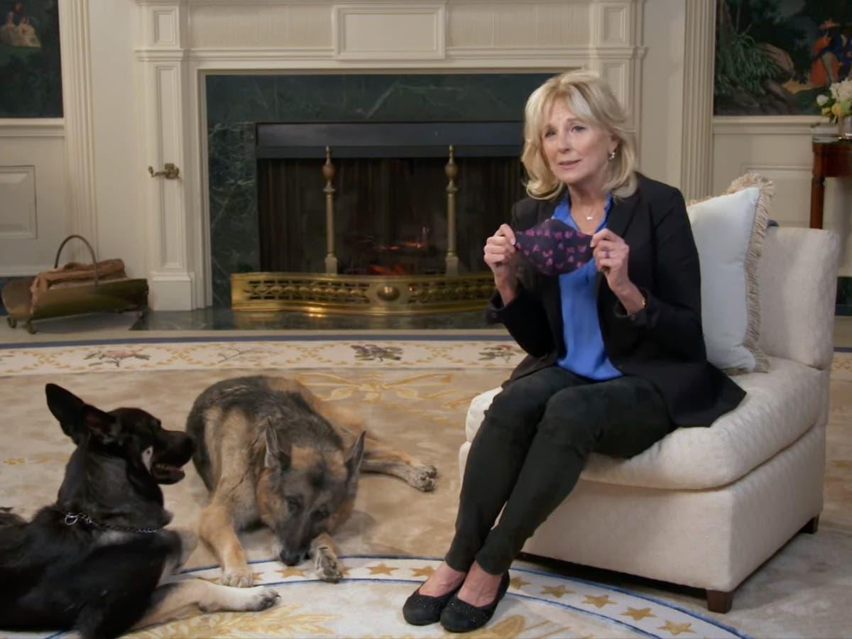 Major and Champ Biden to appear alongside Jill Biden in mask PSA during Puppy Bowl
