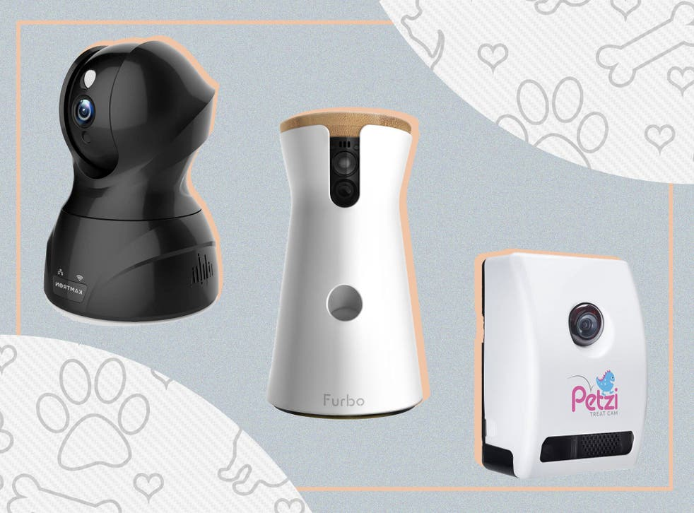 <p>Choose from food dispensers, interactive gadgets and two-way audio systems </p>