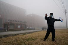 WHO scientist does not rule out Wuhan lab leak as Covid origin