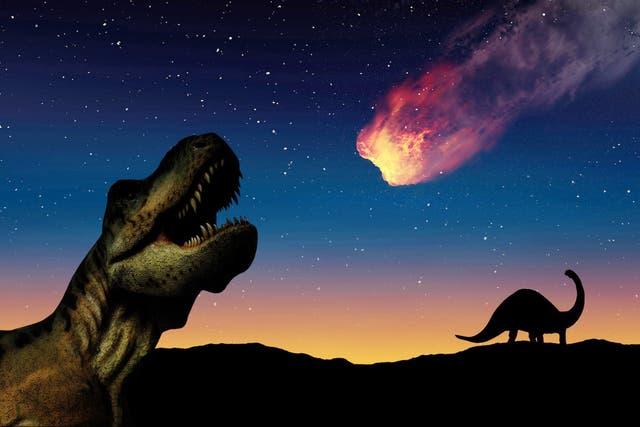"""<p>Los científicos han estado de acuerdo durante mucho tiempo en que los dinosaurios fueron eliminados por el """"impacto de Chicxulub""""  </p>"""