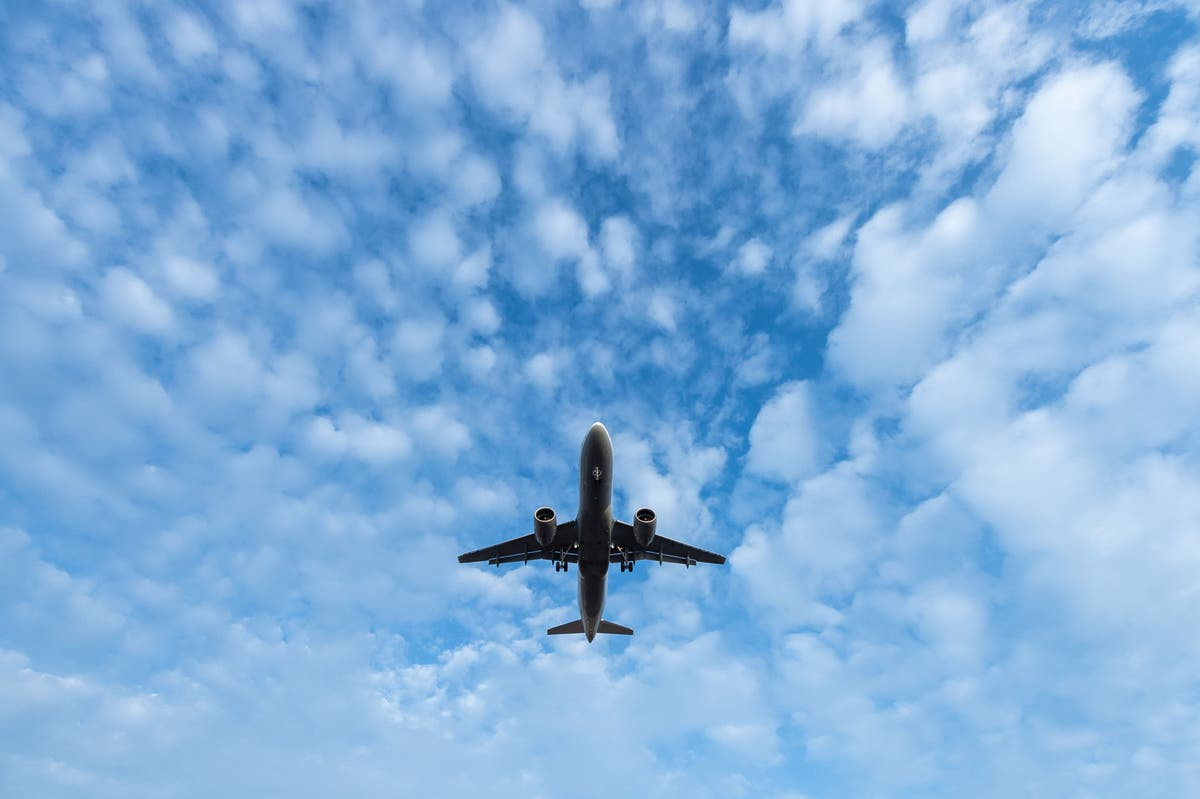 Young adults most concerned about green travel, survey says (cloned)