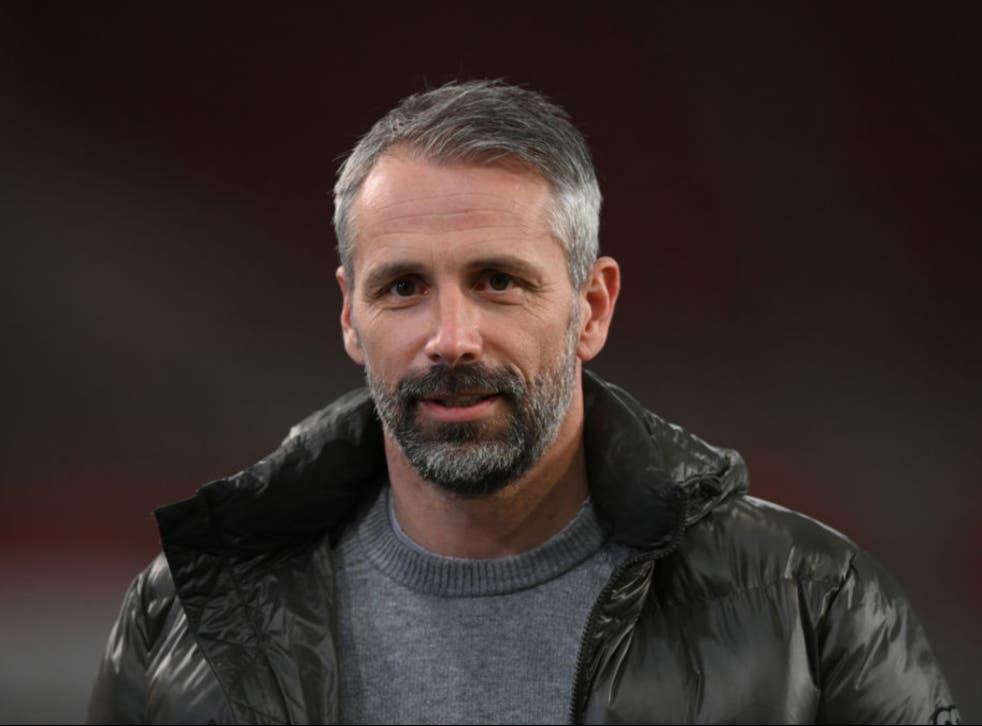 <p>Marco Rose will become Borussia Dortmund's new head coach</p>