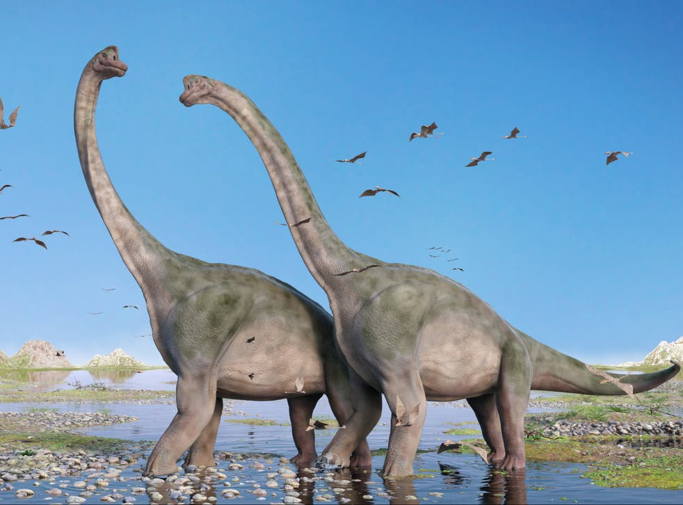 Falling levels of CO2 may have opened up corridors across deserts allowing herbivorous dinosaurs to make epic journeys