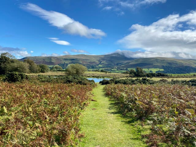 <p>An otherworldly walk along Sarn Helen</p>