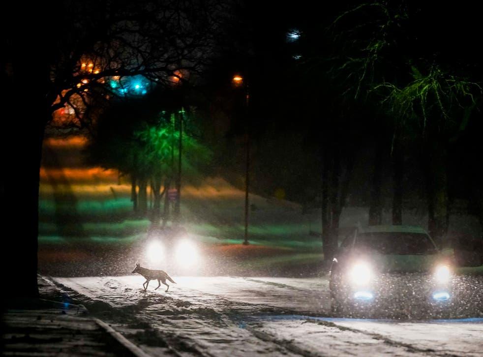 APTOPIX Winter Weather Texas