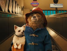 Paddington 2 replaces Citizen Kane as top-rated film on Rotten Tomatoes