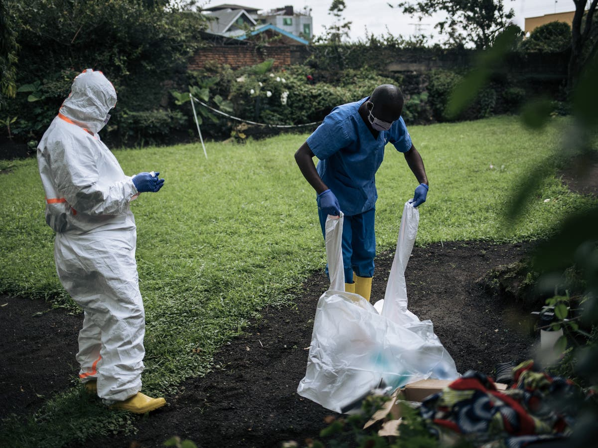 31 people dead from plague outbreak in DRC, say health officials - The Independent