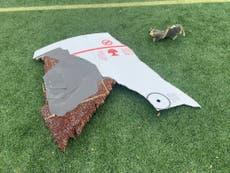 Restos de avión cayeron en suburbios de Denver durante un aterrizaje de emergencia