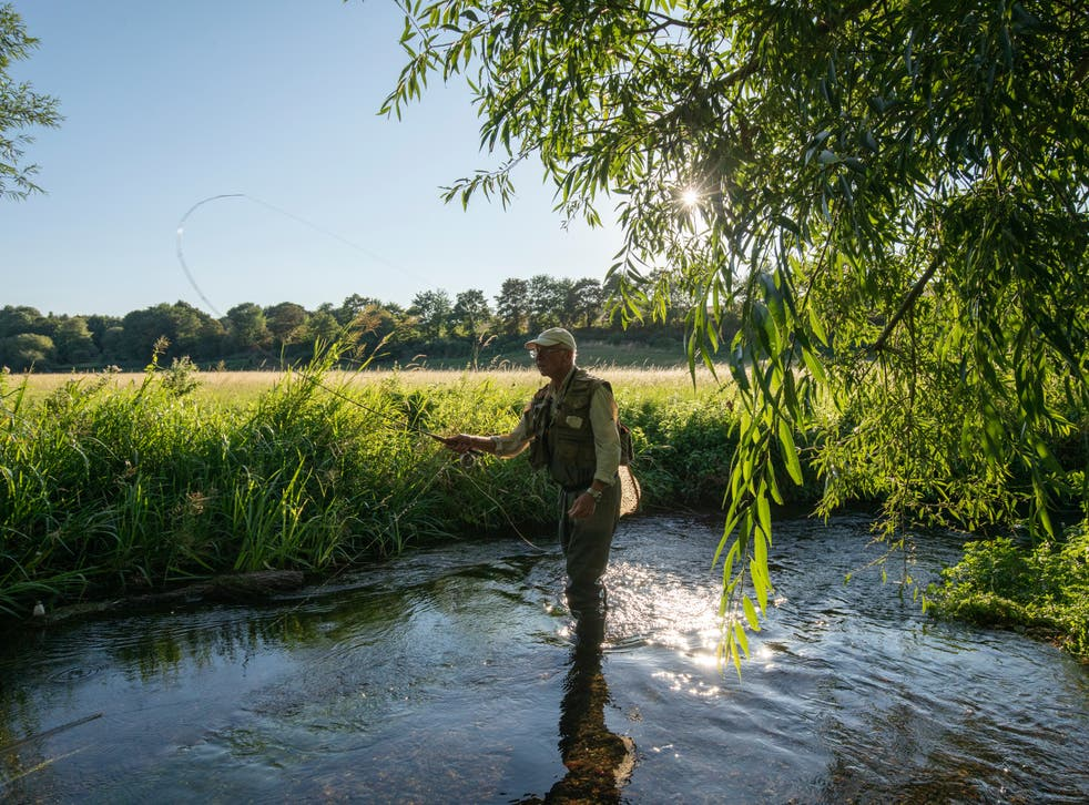 A fly fisherman in the river Darent: of the world's 224 chalk streams, 161 are in the UK