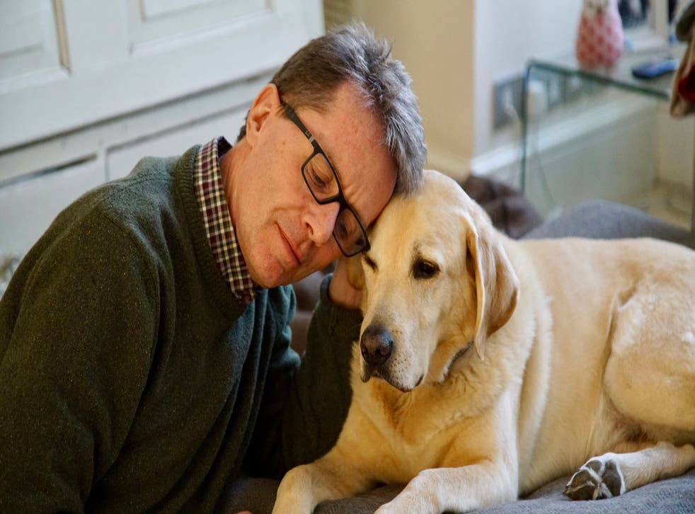 <p>Nicky Campbell with Maxwell</p>