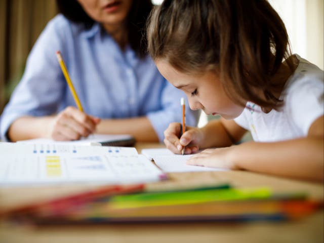 <p>The government has set up a tutoring scheme as part of catch-up plans for pupils </p>