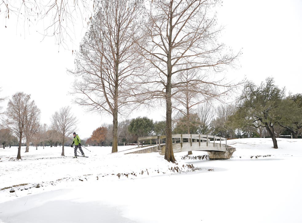 <p>File image: A skier glides along a golf course in Fort Worth, Texas. Winter storm Uri has brought historic cold weather and power outages to the state</p>