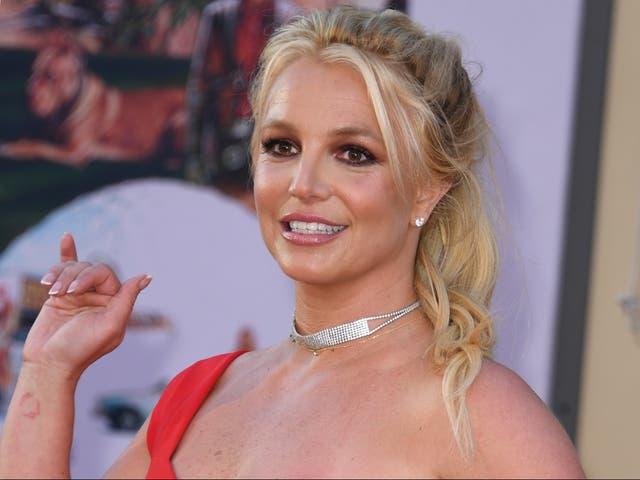 <p>¿Por qué los fans de Britney son tan especiales? </p>