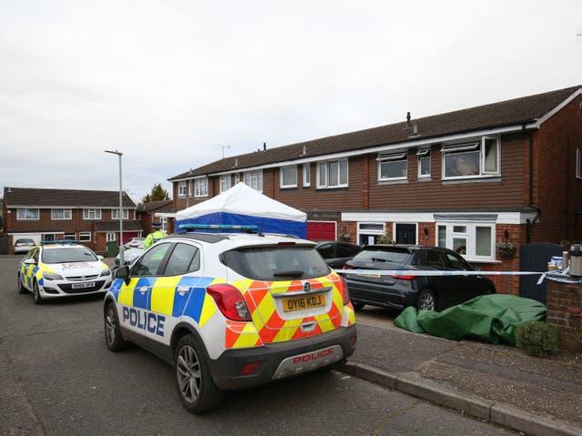 <p> Un agrimensor apuñaló a su esposa e hija hasta la muerte antes de incendiarse a sí mismo  </p>