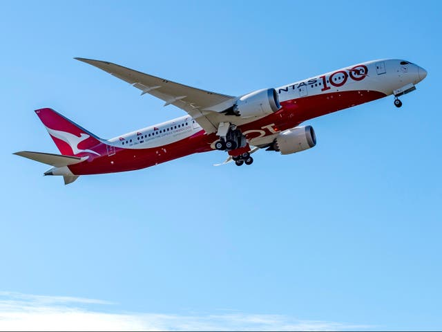 <p>Qantas boss thinks vaccines should be mandatory for international travel</p>