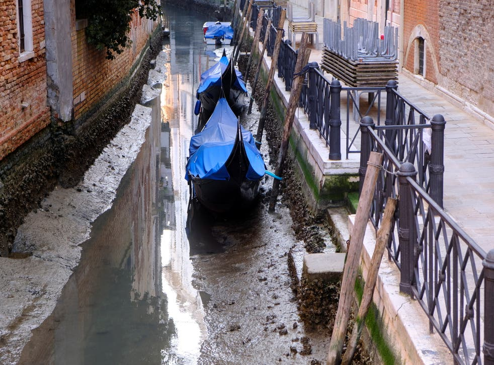 <p>Gondolas are seen in a canal during an exceptionally low tide in the lagoon city of Venice</p>