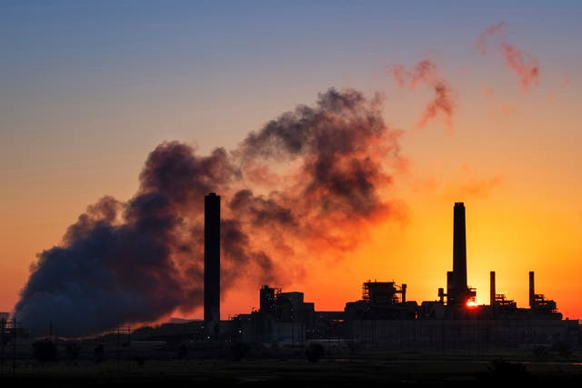 <p>M&G is part of an alliance promising to terminate all coal investments by 2040</p>