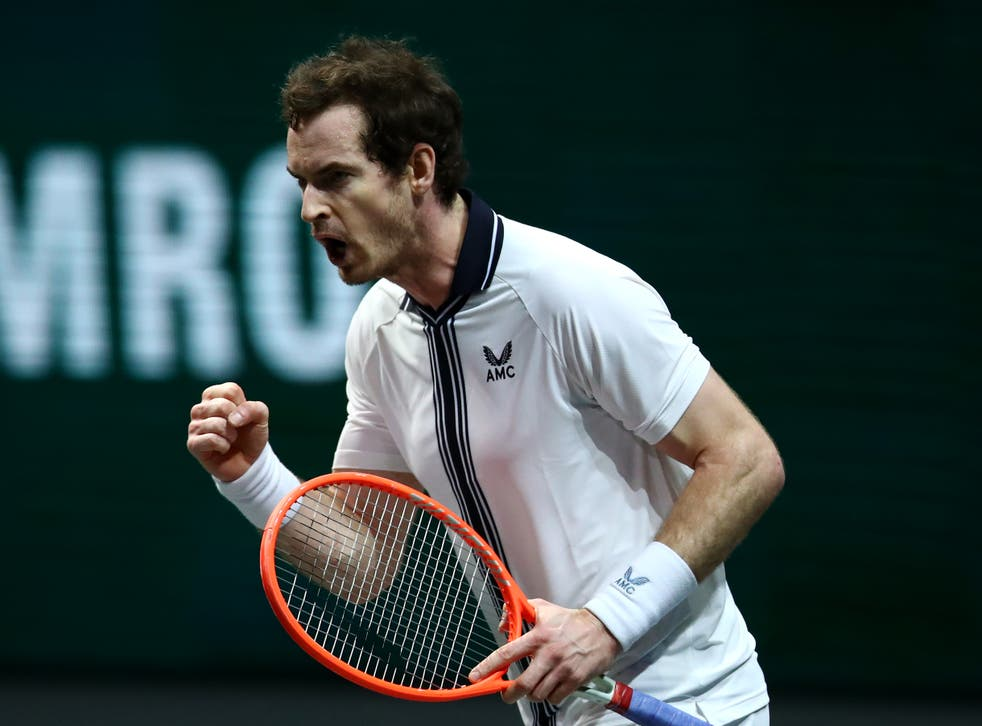 <p>Andy Murray celebrates defeating Robin Haase</p>