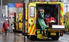 Madre e hija mueren después de que 11 miembros de la familia enfermaran de COVID en reunión navideña