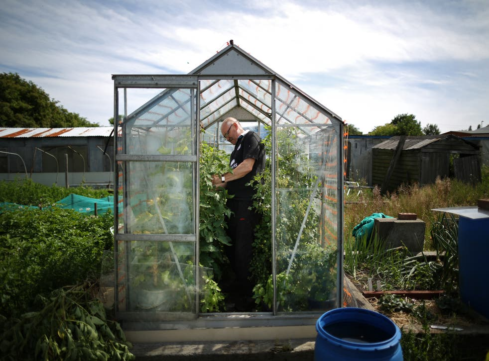 <p>Lockdown has resulted in people spending more time at home and in the garden </p>
