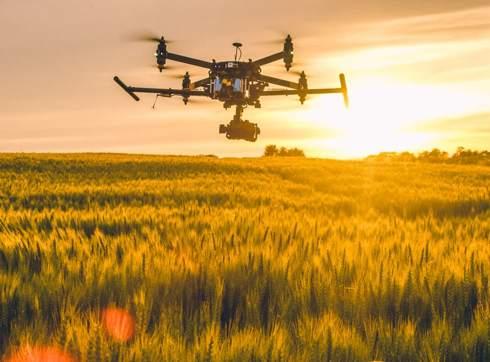 Drones with hoppers can deploy grain laced with poison across hundreds of acres a night