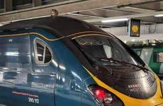 You've got tabby kidding me: train-surfing cat delays passengers
