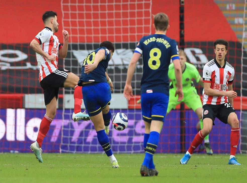 Che Adams' rocket sealed Southampton's win