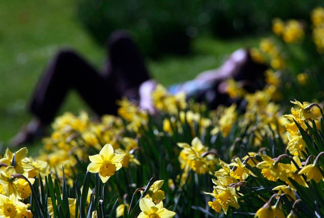 <p>Sunnier, warmer weather behind lift in mood, poll suggests</p>