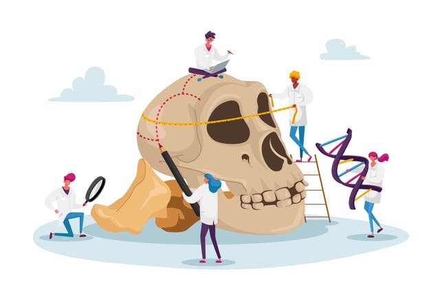<p>Any insight can offer new clues into one of the most-debated, unresolved questions about the ancient hominids: whether Neanderthals spoke</p>