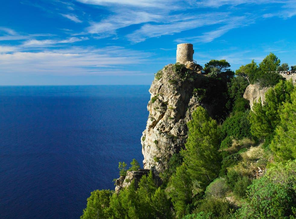 <p>Mallorca is getting greener</p>