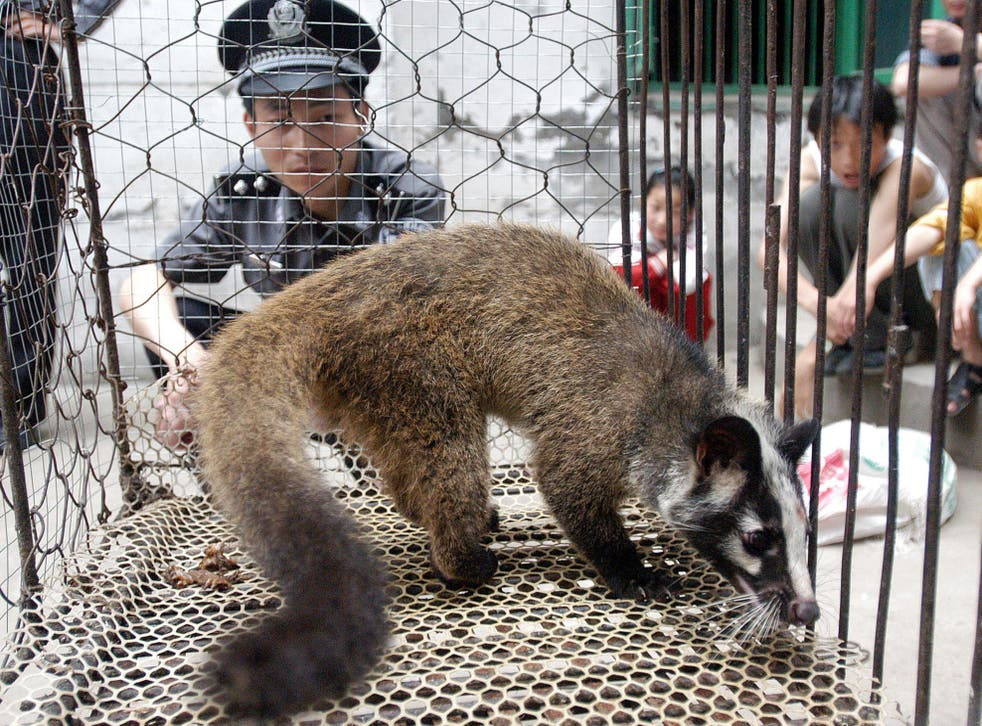 The experts believe the virus probably crossed from wildlife into farmed or domesticated animals in the Wuhan market, and from there to people