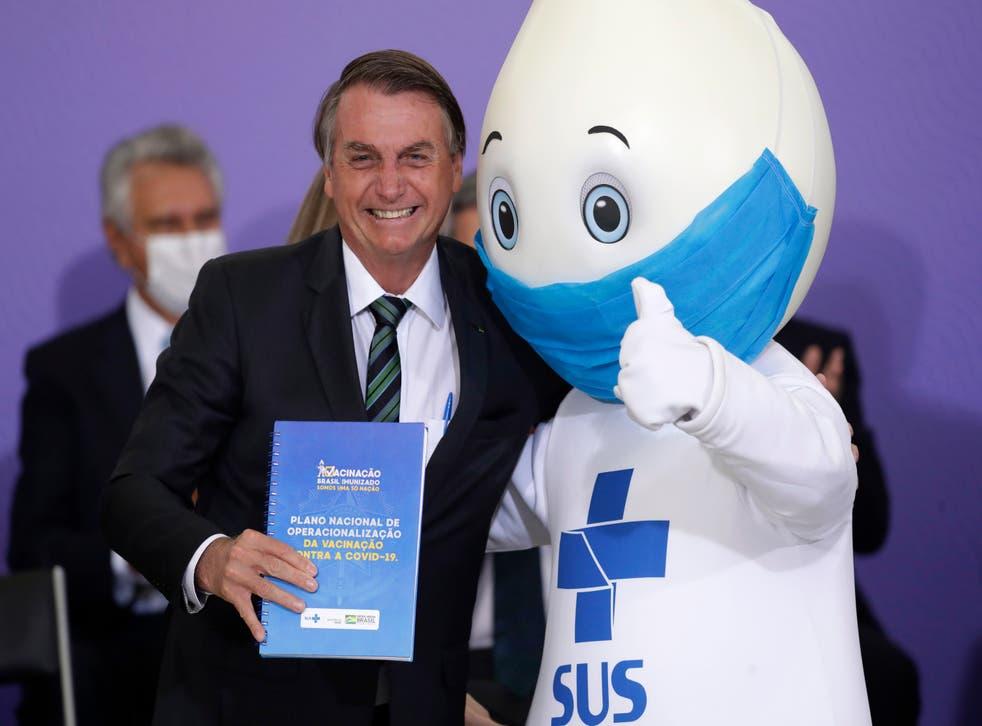 Virus Outbrek Brazil Mascot