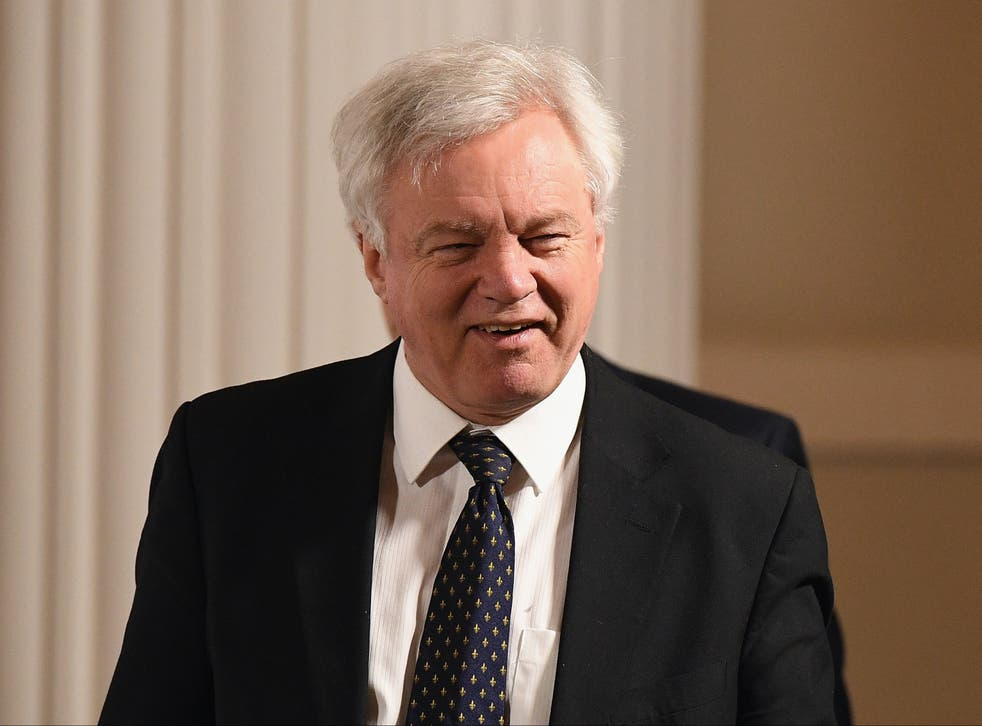 Tory MP and former Brexit minister David Davis