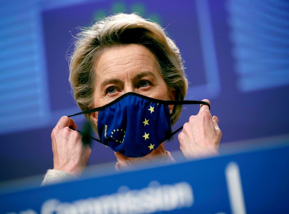 <p>European Commission president Ursula von der Leyen</p>